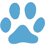 animals-cat-track-icon-150x150